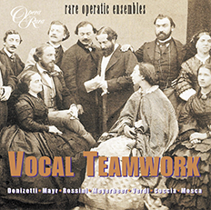 Vocal Teamwork
